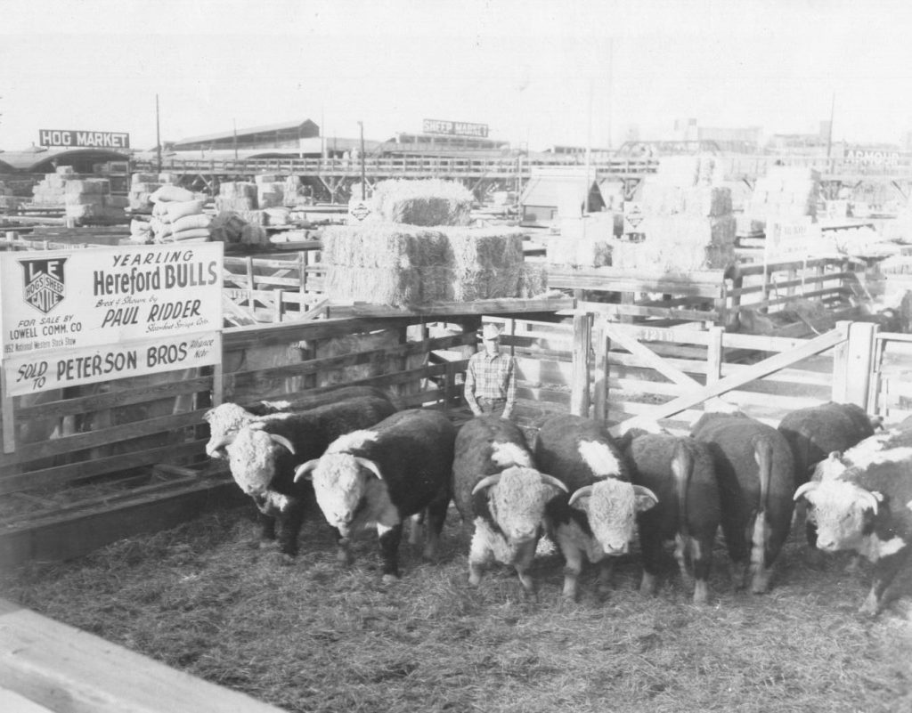 1952 National Western Stock Show Carload.