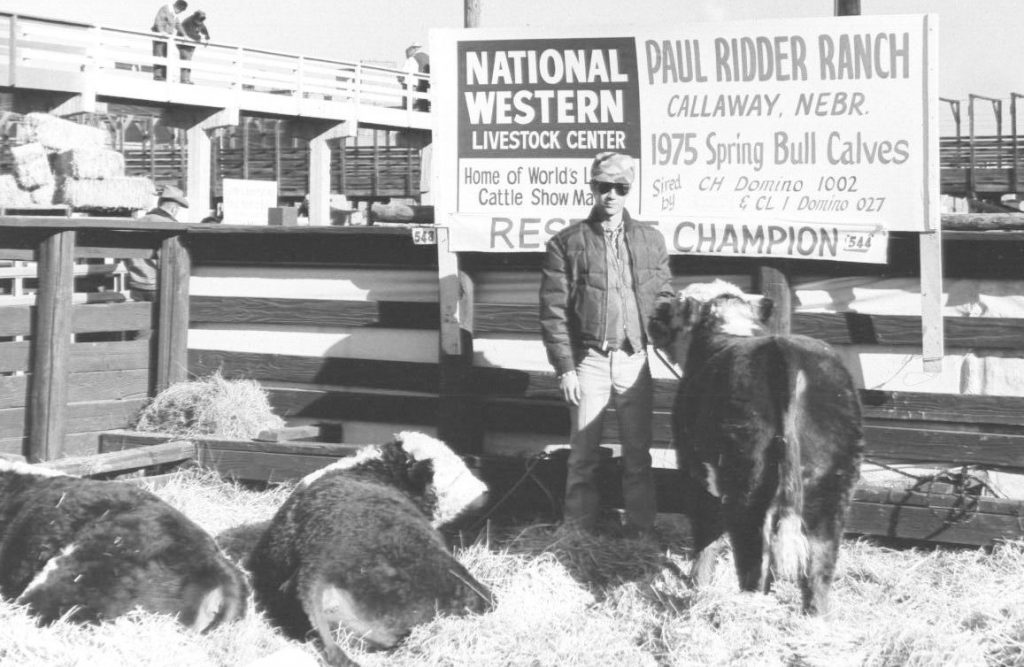John Ridder's 1975 National Western Carload Bulls