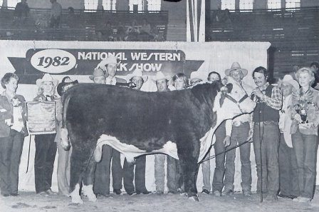 1982 National Western Grand Champion Bull: Metric